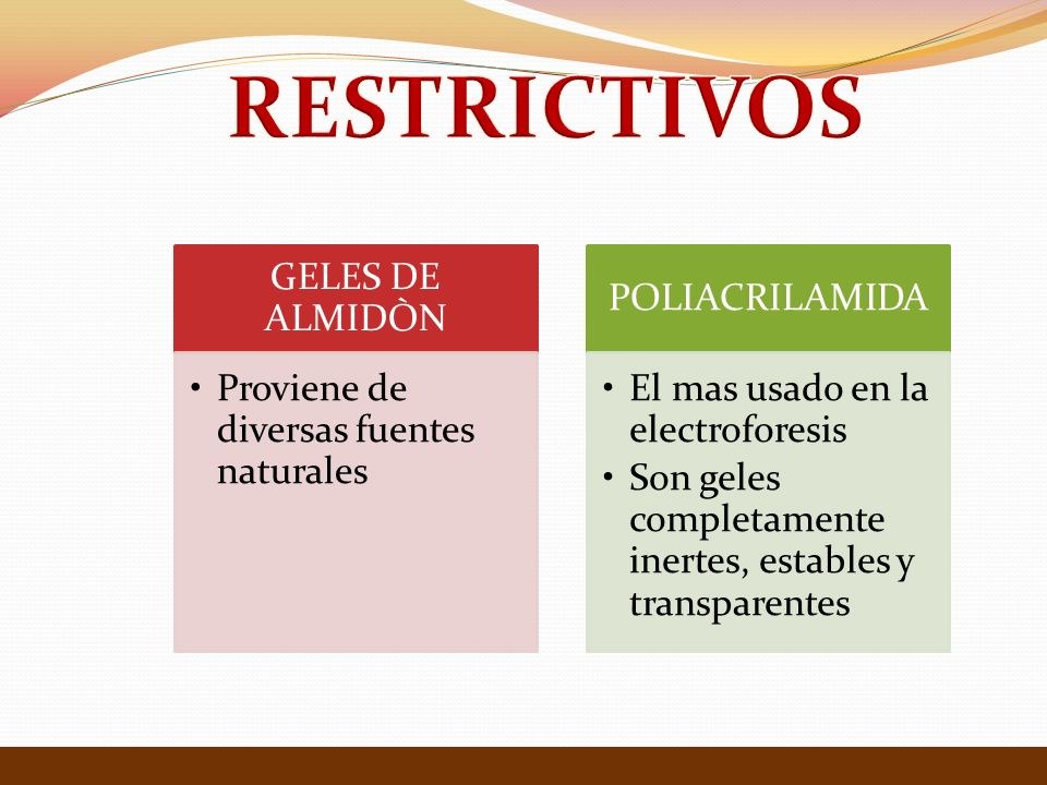 RESTRICTIVOS GELES DE ALMIDÒN Proviene de diversas fuentes naturales