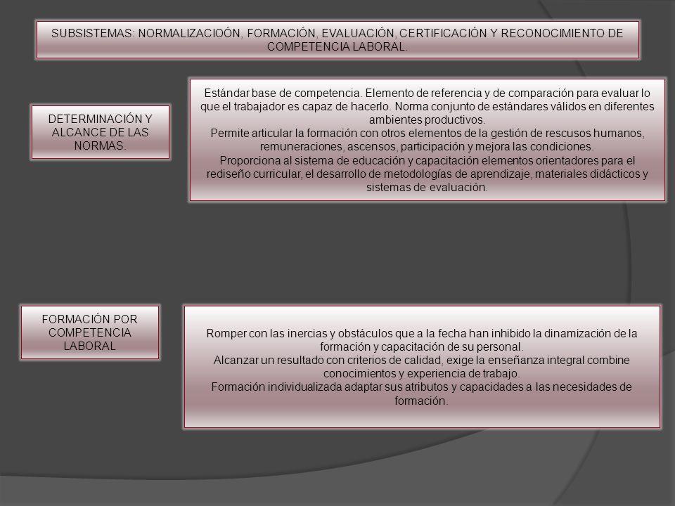 DETERMINACIÓN Y ALCANCE DE LAS NORMAS.