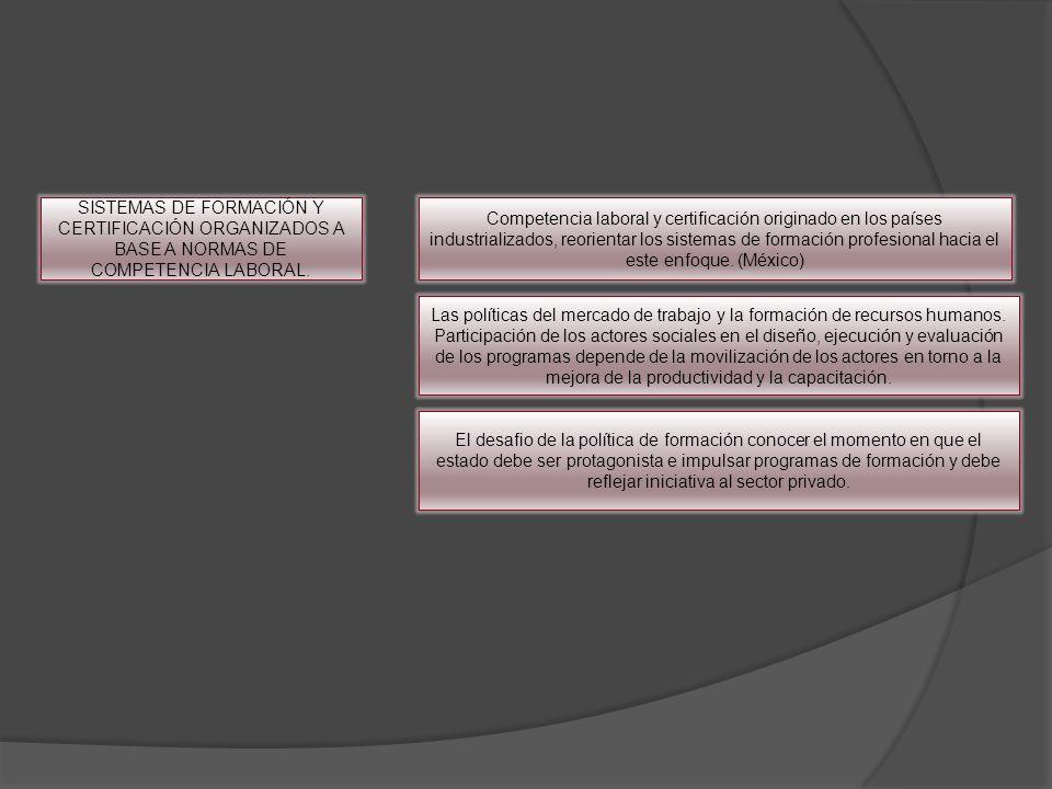 SISTEMAS DE FORMACIÓN Y CERTIFICACIÓN ORGANIZADOS A BASE A NORMAS DE COMPETENCIA LABORAL.