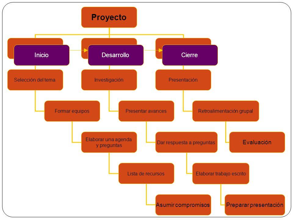Proyecto Inicio Desarrollo Cierre Asumir compromisos