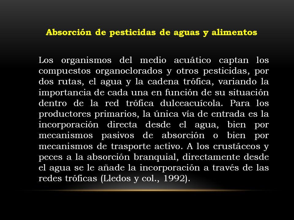 Absorción de pesticidas de aguas y alimentos