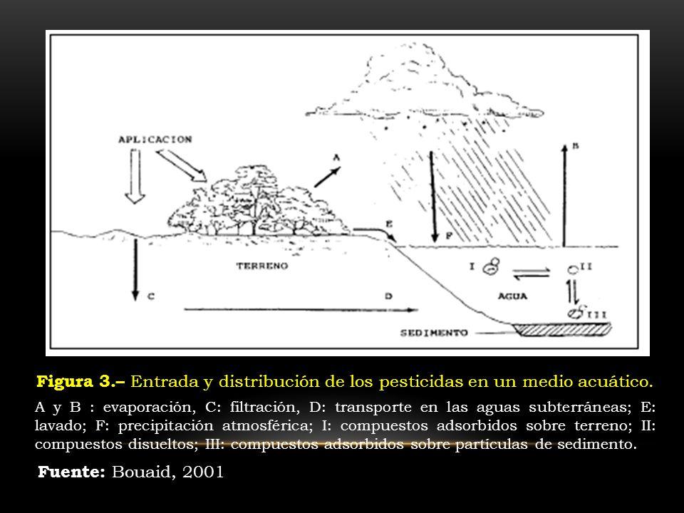 Figura 3.– Entrada y distribución de los pesticidas en un medio acuático.