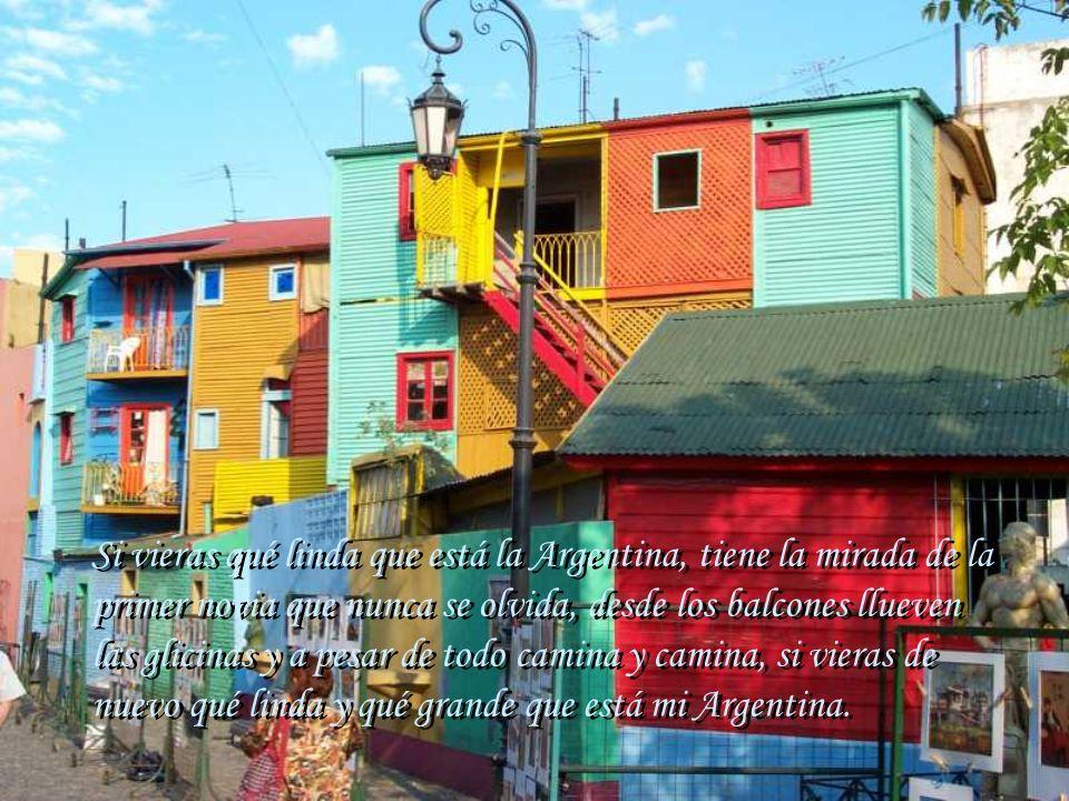 Si vieras qué linda que está la Argentina, tiene la mirada de la primer novia que nunca se olvida, desde los balcones llueven las glicinas y a pesar de todo camina y camina, si vieras de nuevo qué linda y qué grande que está mi Argentina.