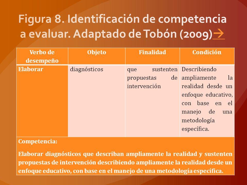 Figura 8. Identificación de competencia a evaluar