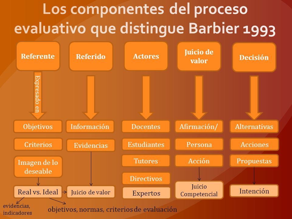 Los componentes del proceso evaluativo que distingue Barbier 1993