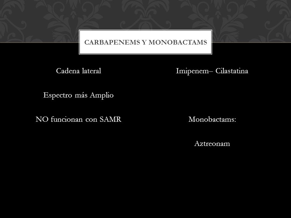 Carbapenems y monobactams
