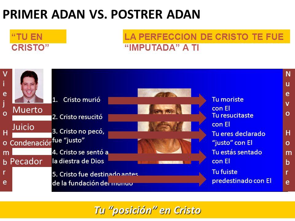 PRIMER ADAN VS. POSTRER ADAN