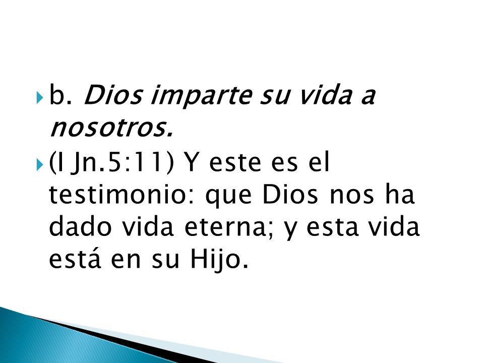 b. Dios imparte su vida a nosotros.