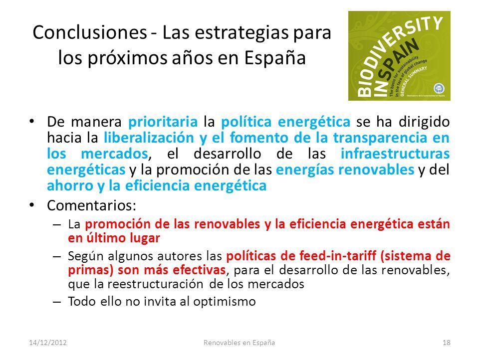 Conclusiones - Las estrategias para los próximos años en España