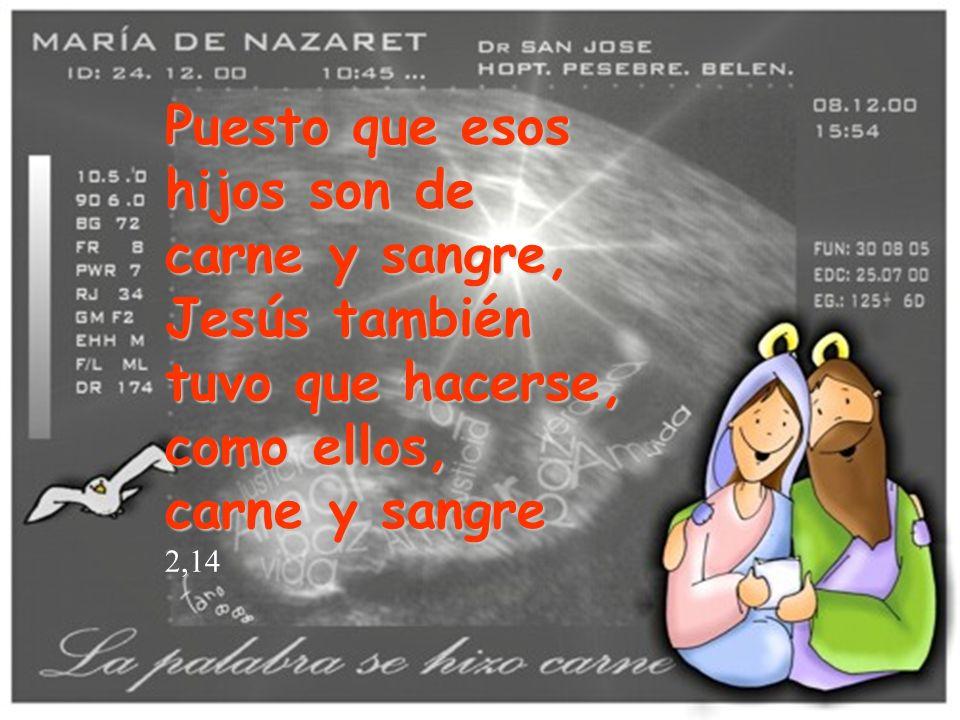 Puesto que esos hijos son de carne y sangre, Jesús también tuvo que hacerse, como ellos,