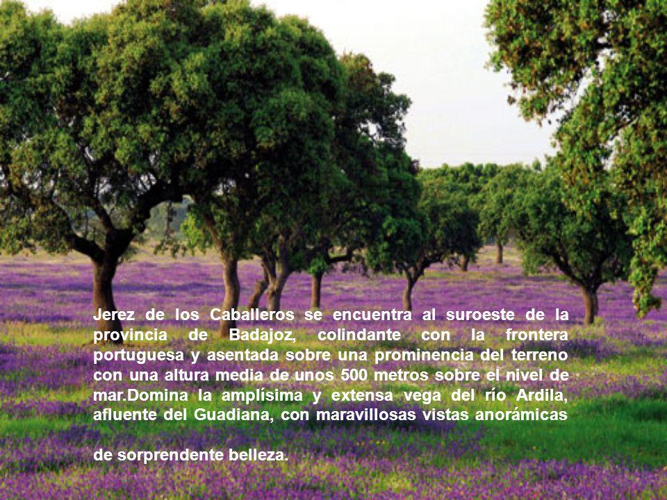 Jerez de los Caballeros se encuentra al suroeste de la provincia de Badajoz, colindante con la frontera portuguesa y asentada sobre una prominencia del terreno con una altura media de unos 500 metros sobre el nivel de mar.Domina la amplísima y extensa vega del río Ardila, afluente del Guadiana, con maravillosas vistas anorámicas de sorprendente belleza.