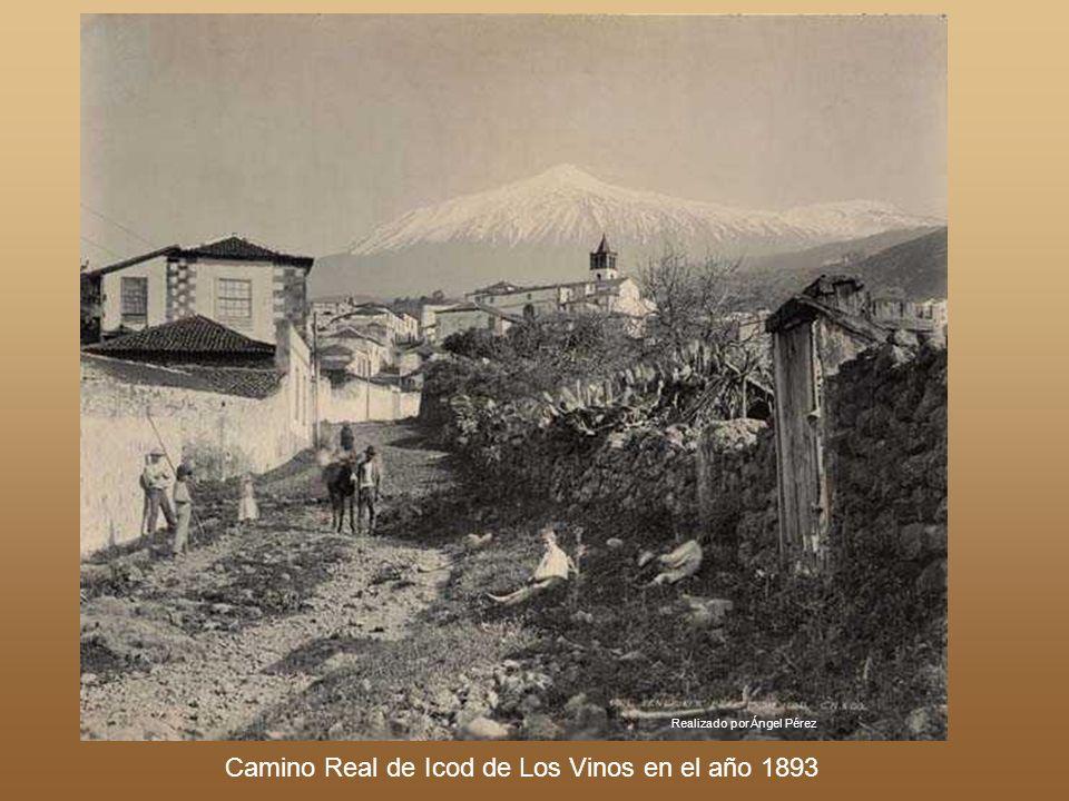 Camino Real de Icod de Los Vinos en el año 1893