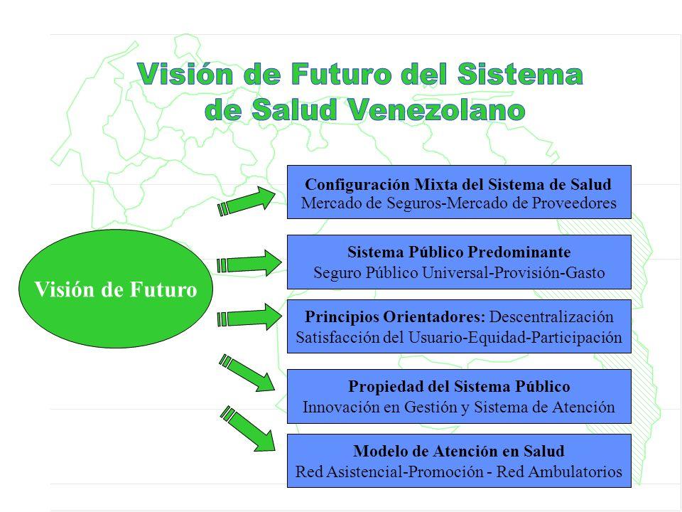 Visión de Futuro Visión de Futuro del Sistema de Salud Venezolano