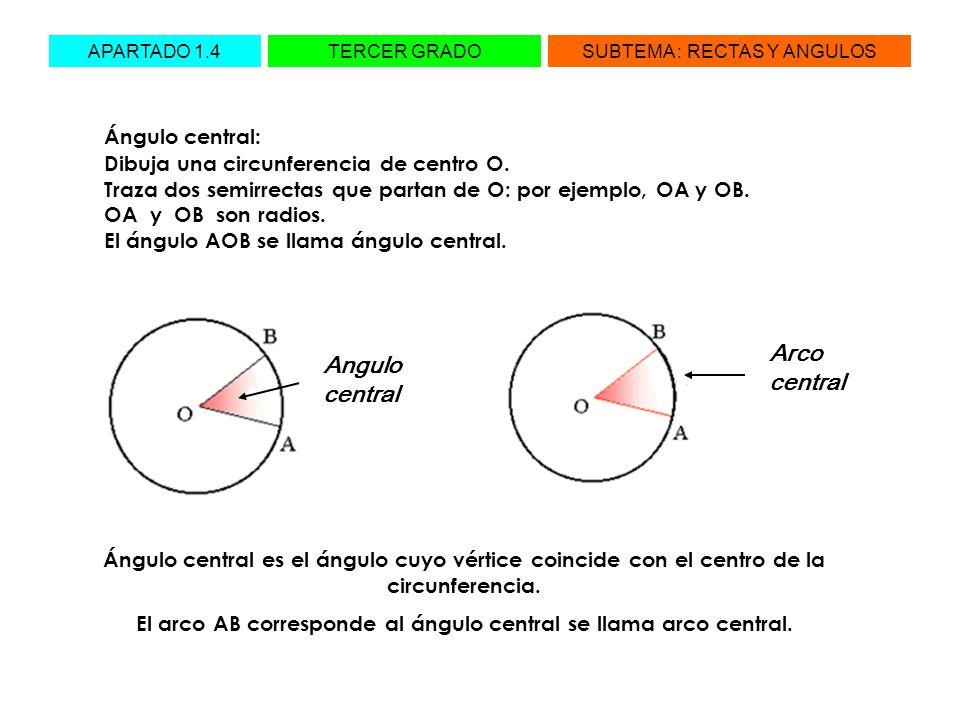 El arco AB corresponde al ángulo central se llama arco central.