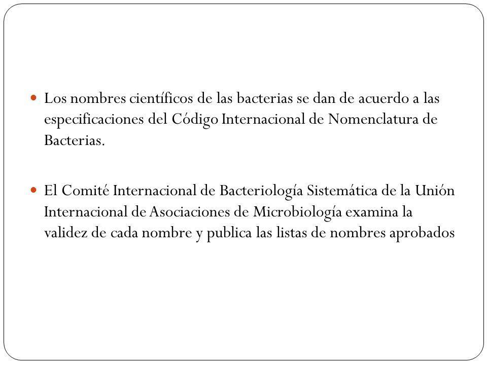 Los nombres científicos de las bacterias se dan de acuerdo a las especificaciones del Código Internacional de Nomenclatura de Bacterias.