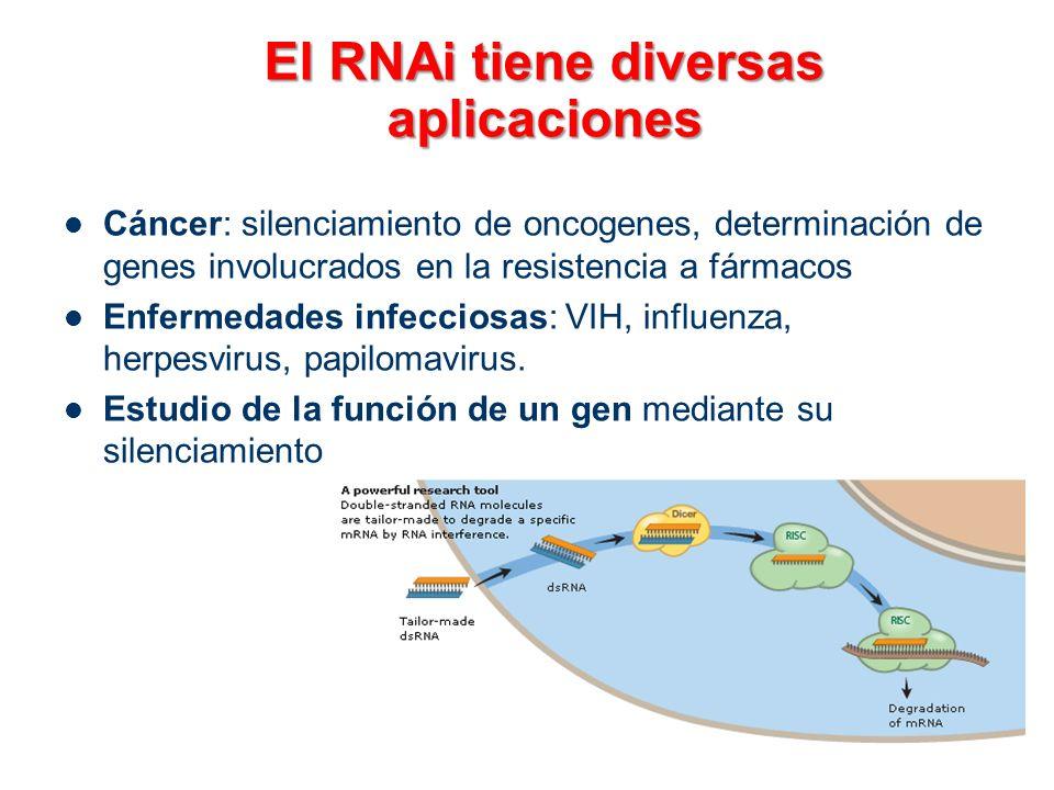 El RNAi tiene diversas aplicaciones