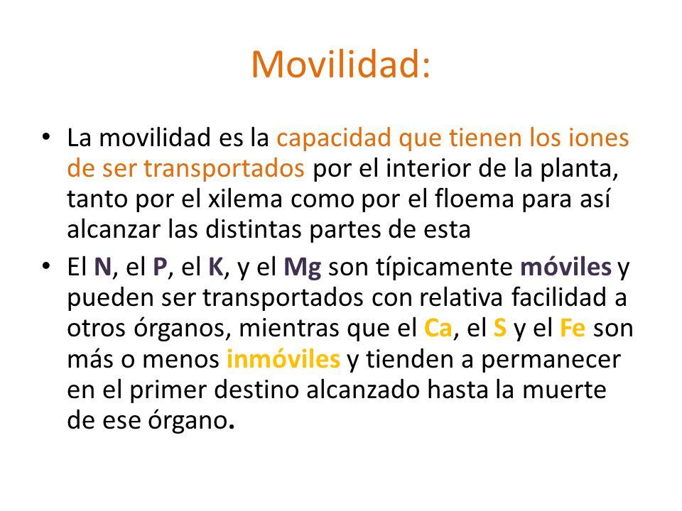 Movilidad: