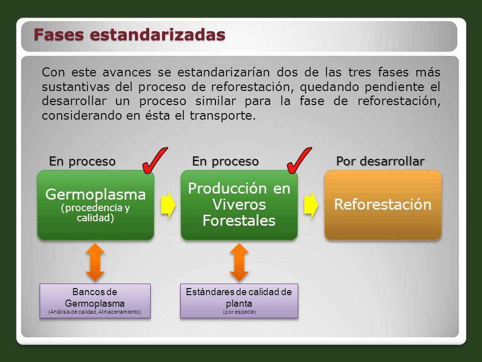 Fases estandarizadas Producción en Viveros Forestales