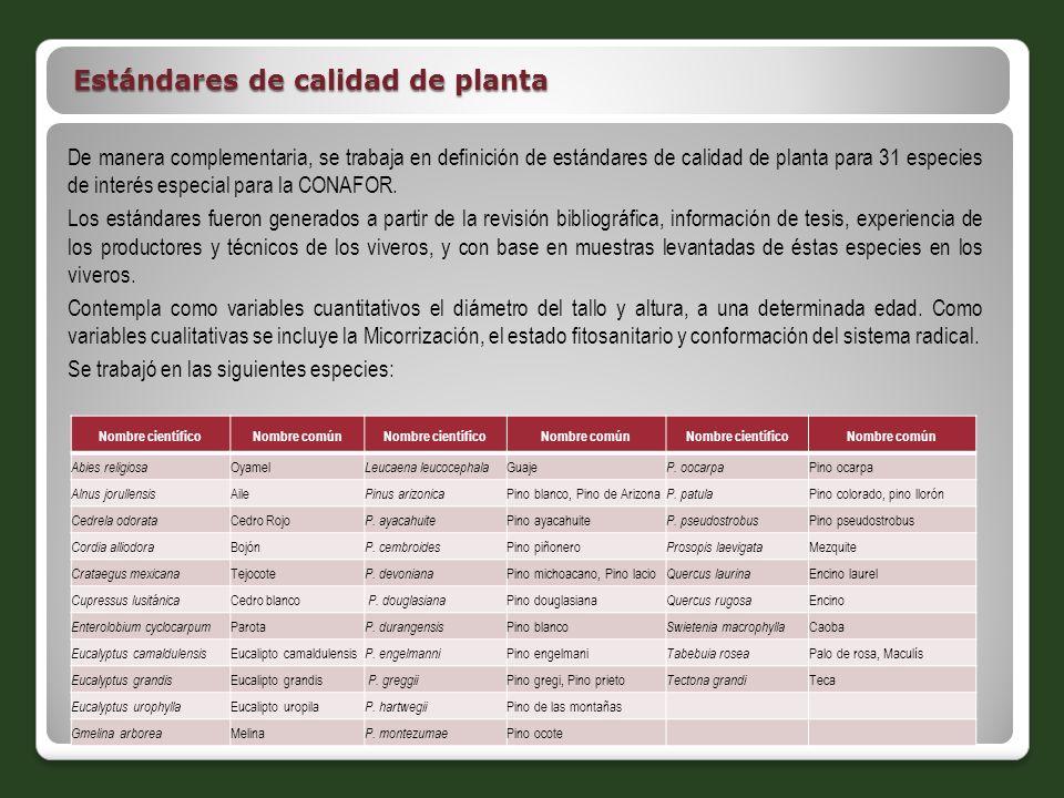 Estándares de calidad de planta