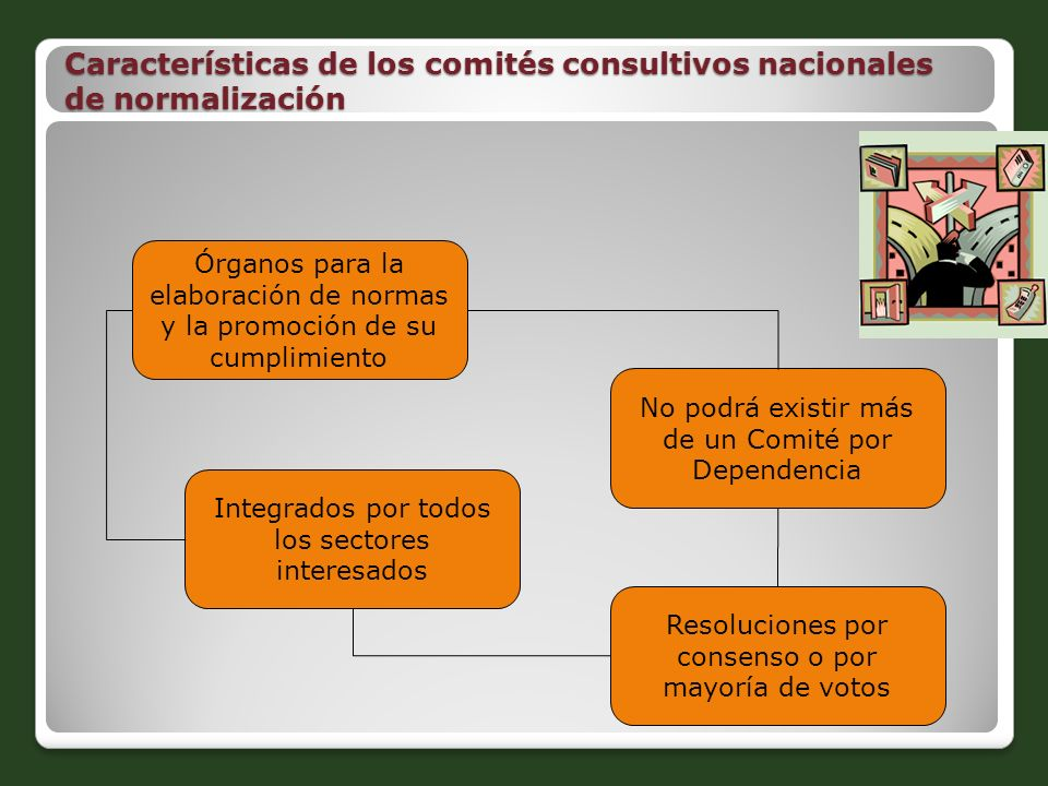 Características de los comités consultivos nacionales de normalización