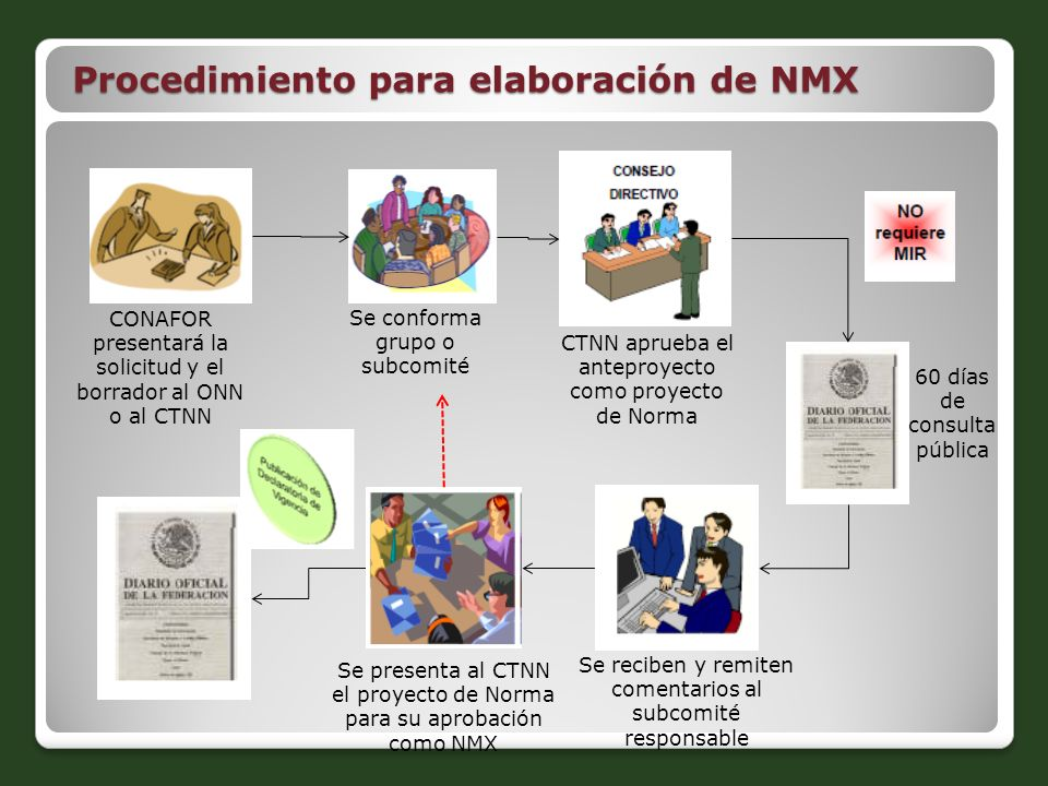 Procedimiento para elaboración de NMX