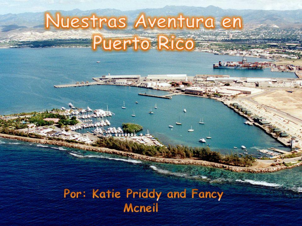 Nuestras Aventura en Puerto Rico