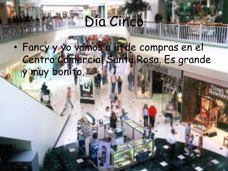 Día Cinco Fancy y yo vamos a ir de compras en el Centro Comercial Santa Rosa.