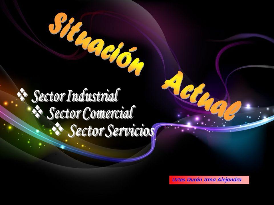 Sector Industrial Sector Comercial Sector Servicios