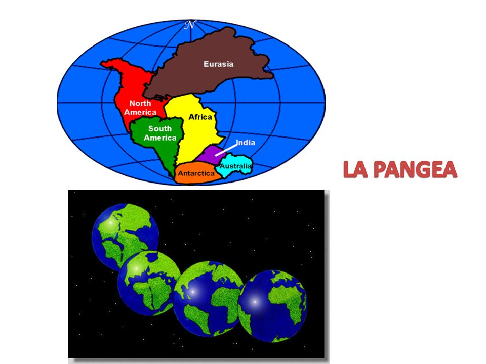 LA PANGEA
