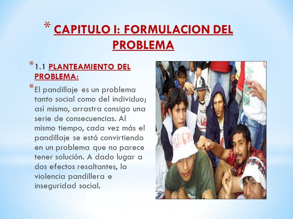CAPITULO I: FORMULACION DEL PROBLEMA