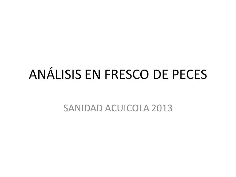 ANÁLISIS EN FRESCO DE PECES
