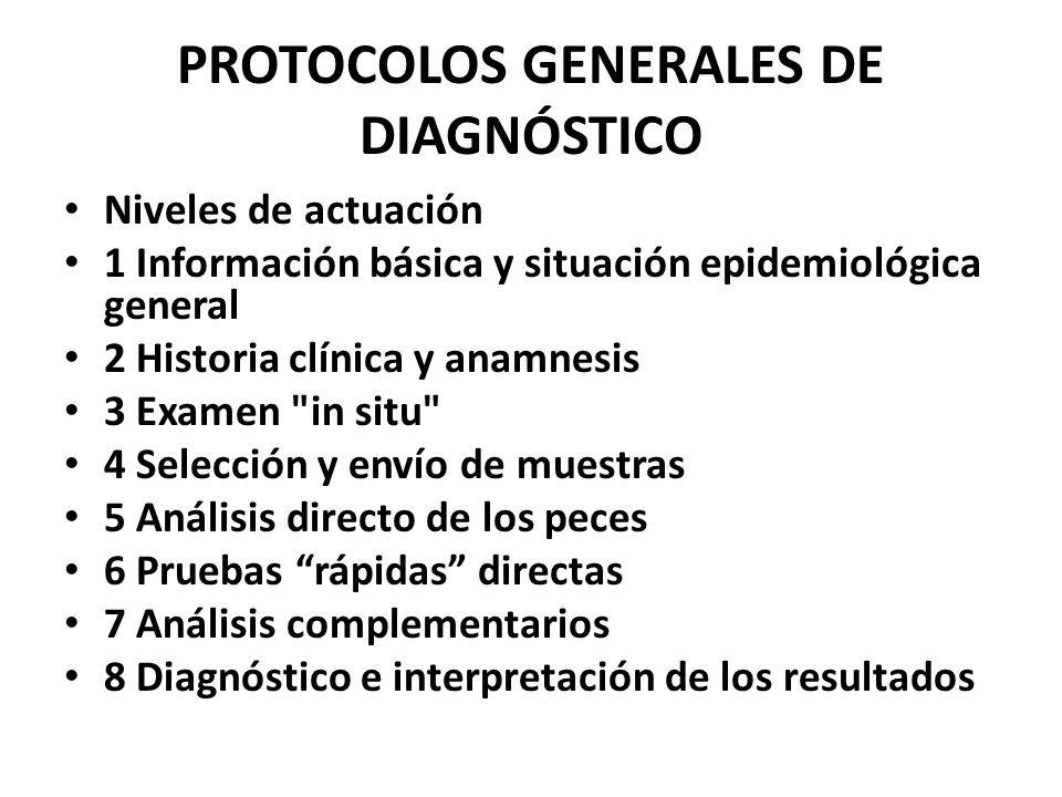 PROTOCOLOS GENERALES DE DIAGNÓSTICO