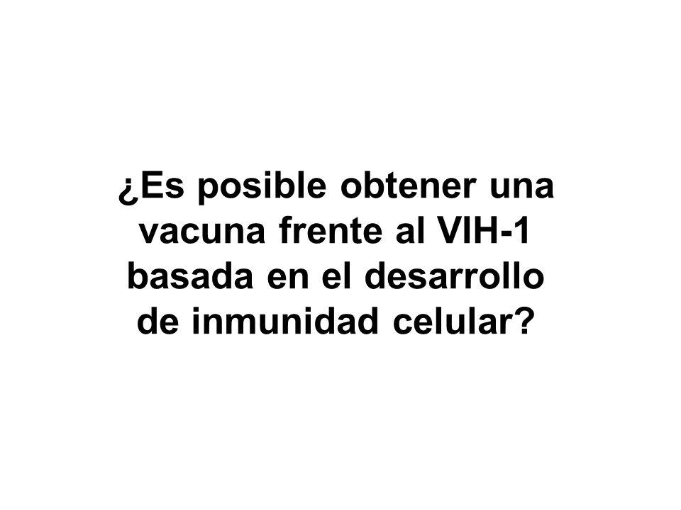 ¿Es posible obtener una vacuna frente al VIH-1 basada en el desarrollo de inmunidad celular