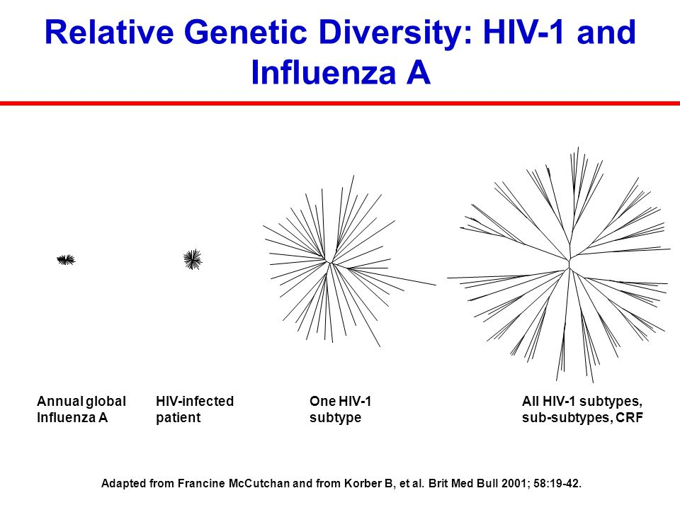Relative Genetic Diversity: HIV-1 and Influenza A