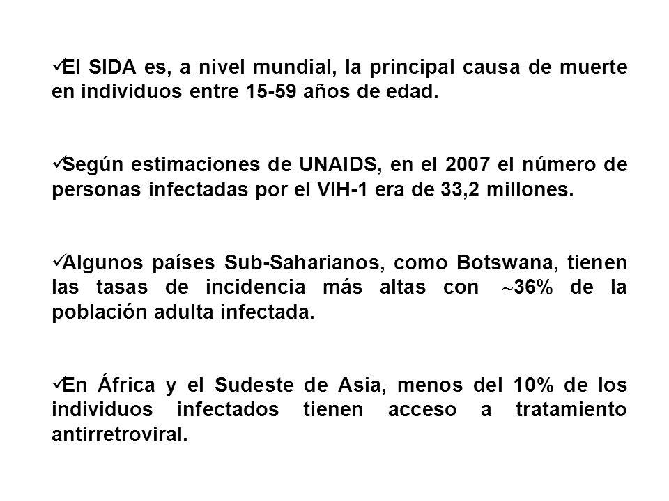El SIDA es, a nivel mundial, la principal causa de muerte en individuos entre 15-59 años de edad.