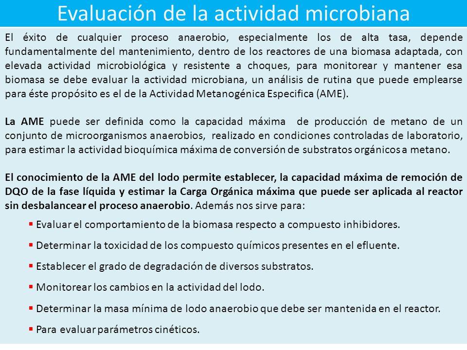 Evaluación de la actividad microbiana