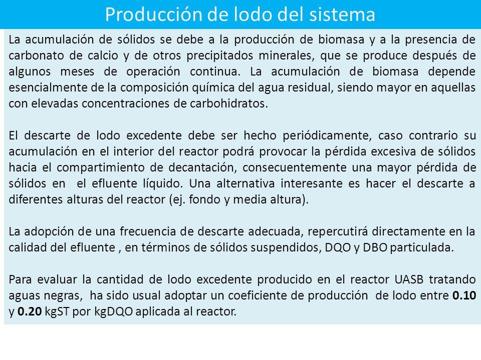 Producción de lodo del sistema