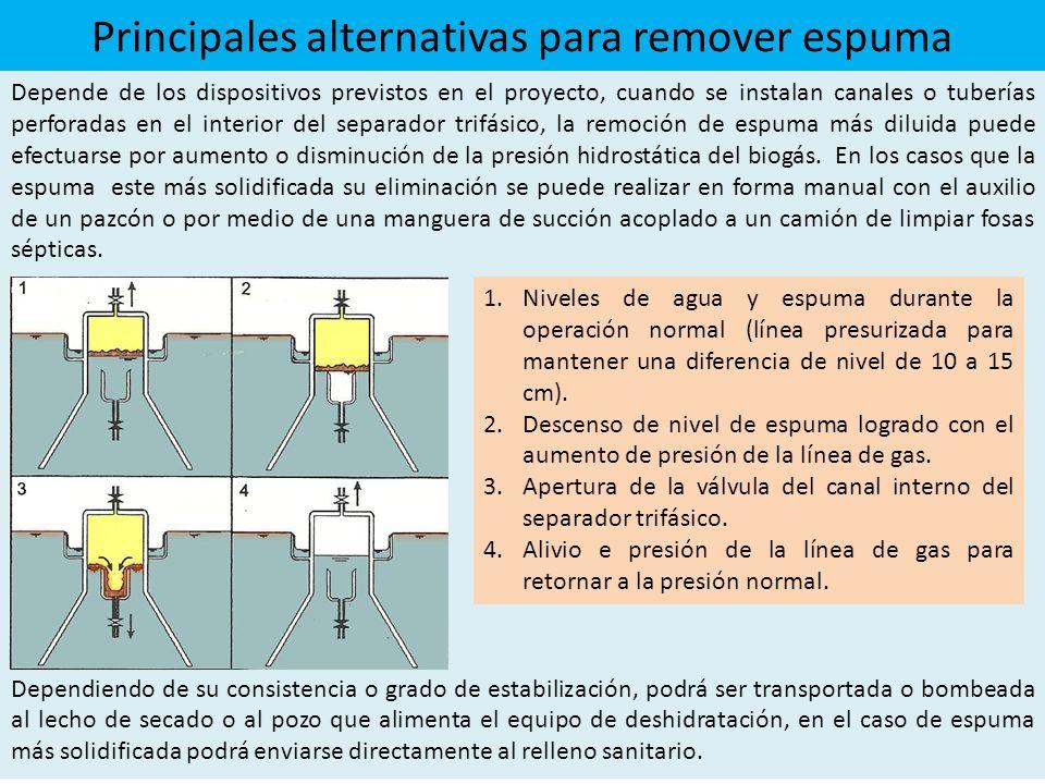 Principales alternativas para remover espuma