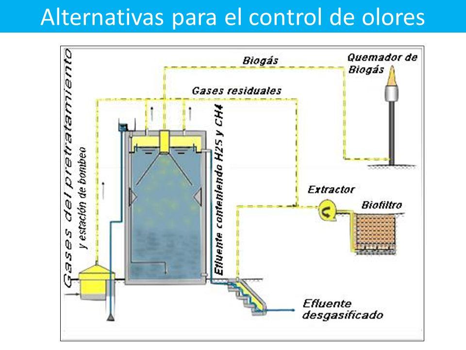 Alternativas para el control de olores