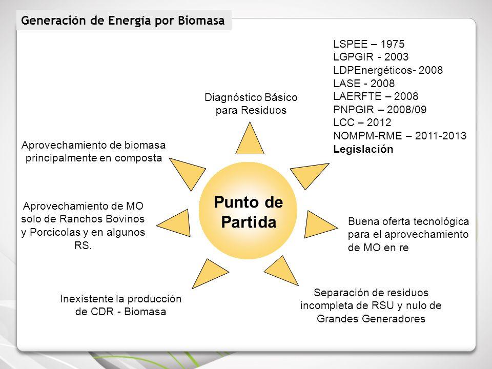 Punto de Partida Generación de Energía por Biomasa LSPEE – 1975