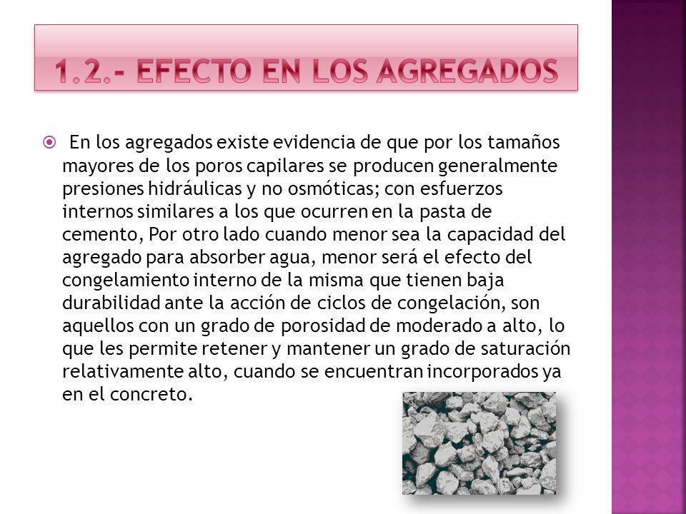 1.2.- EFECTO EN LOS AGREGADOS