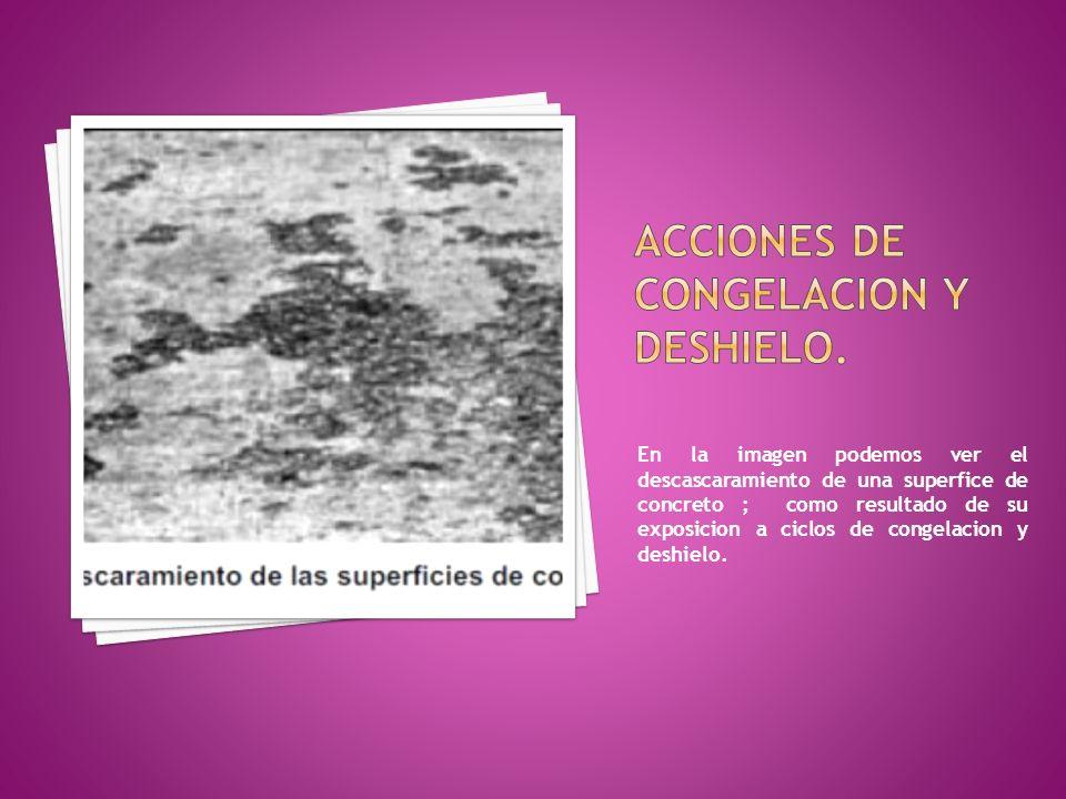 ACCIONES DE CONGELACION Y DESHIELO.