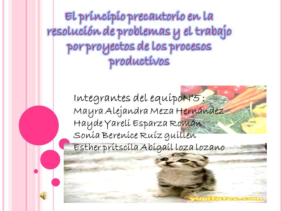 El principio precautorio en la resolución de problemas y el trabajo por proyectos de los procesos productivos