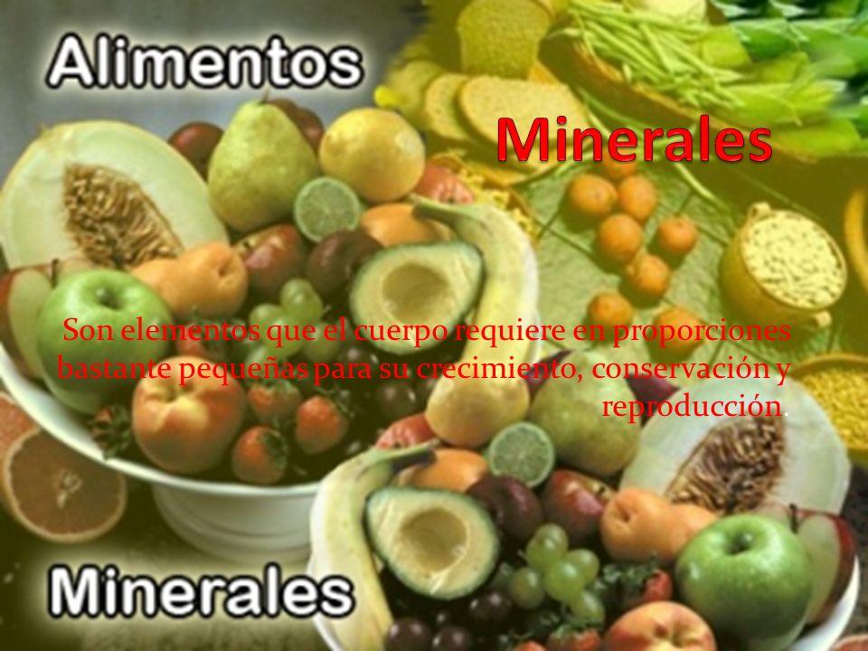 Minerales Son elementos que el cuerpo requiere en proporciones bastante pequeñas para su crecimiento, conservación y reproducción.