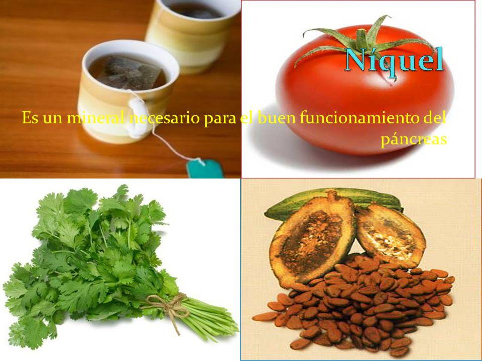 Es un mineral necesario para el buen funcionamiento del páncreas