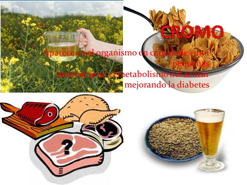 CROMO Aparece en el organismo en cantidades mui pequeñas Interviene en el metabolismo del azúcar mejorando la diabetes.
