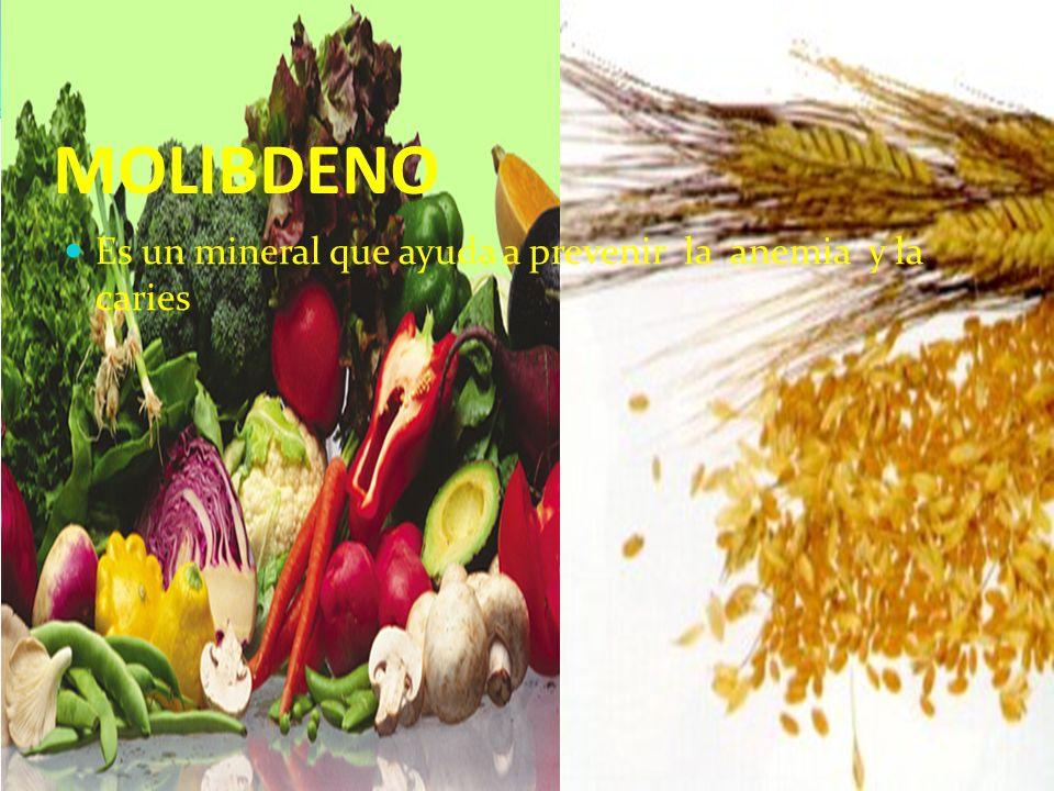 MOLIBDENO Es un mineral que ayuda a prevenir la anemia y la caries