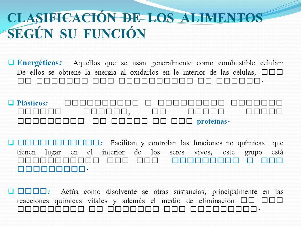 CLASIFICACIÓN DE LOS ALIMENTOS SEGÚN SU FUNCIÓN