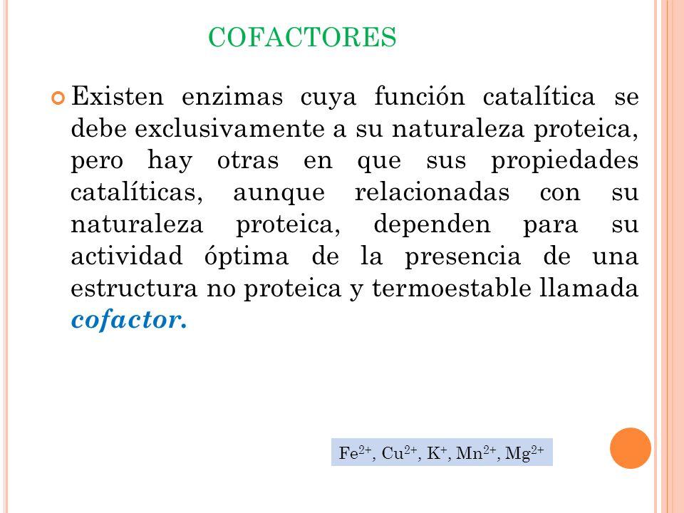 COFACTORES