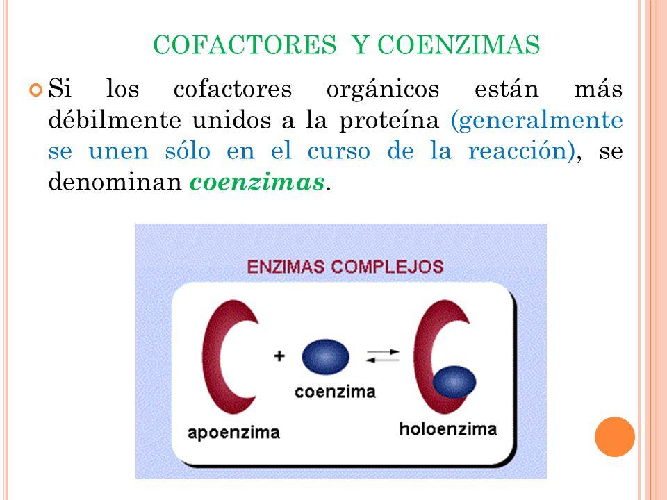COFACTORES Y COENZIMAS